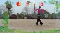 广场舞--一曲红尘--风度翩翩视频剪辑_201606261138