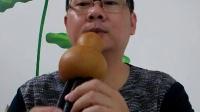 2016葫芦丝技巧14、葫芦丝回音  曲佤哈文葫芦丝讲座