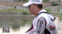混养练竿塘--江湖鲤 5H 实战演示
