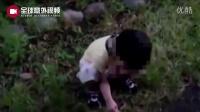 【全球意外视频】野外陪小孩玩居然看到恐怖的一幕。。。