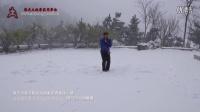 凌子力雪中一路2015