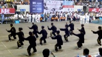 安徽省第七届传统武术比赛
