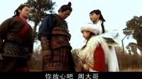 【国产】萍踪侠影 【2004】(2)