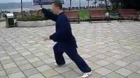 杨氏太极拳传统37式_标清