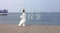 传统杨式太极拳8式(反正打)_标清