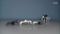 S02E01-一个字头的诞生-MOTOYS首作SPY SPIDER间谍蜘蛛