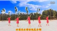 广场舞--你是上天给我的礼物【二】--风度翩翩视频剪辑