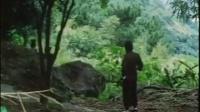 《醉步迷猴》【港台经典武侠片】