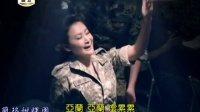 陈亚兰-三角矸國安感冒夜廣告