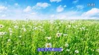 青藏高原 - 韩红 【八里河】