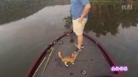 男子河上钓鱼 却意外救起两只被遗弃的猫咪