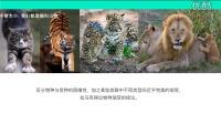 (超清)高中生物必修2 第7章第1节 现代生物进化理论(1)