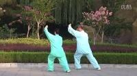 太极伉俪-杨式85式太极拳(惠合同版)太极夫妇八十五式