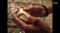 营口名菜-姜葱炒蟹的做法-营口影视1839
