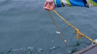 iPhone 7 vs S7深水测试!有多深之前死了?