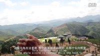 灵异视频 真实版 盗墓笔记 现实版 云顶天宫 风水大师专业分析