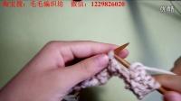 第6辑 冬季菠萝花围巾  毛毛编织坊