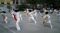 陈式太极刀-青甫太极拍林站人民广场站