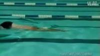 最强蝶泳教学