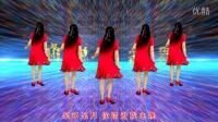 滨海新区汉沽和悦广场舞(你不来我不老)20步演示