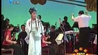 新世纪黄梅戏五朵金花颁奖晚会