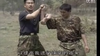 刘毅 特种兵搏击擒拿训练 夺刀技术I 标清