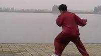 陈瑜 家传陈氏太极拳二路炮捶