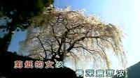 杨钰莹 - 剪纸花的女孩  黎志勇音乐