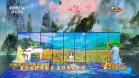山水中国美 - 林心如 梁咏琪 刘涛