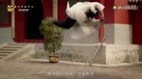 鸟瞰中国(下集):继往开来