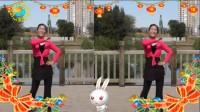 沈北新区喜洋洋广场舞-真的不容易表演喜洋洋