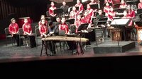 日本民歌《樱花》刘乐演奏日本筝