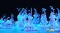 2016第八届小荷风采舞蹈《小白翎》幼儿舞蹈视频大全