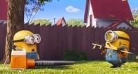 修剪草坪的小黄人