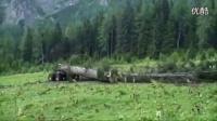 丛林之马 大型木材收集机 代替马匹_高清