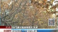 中央气象台:强冷空气来袭  中东部迎剧烈降温 北京您早 161120