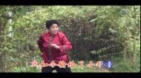 紫光录制·王素君-对花枪-手拉着能杀惯站的罗八弟