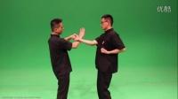 咏春拳木人桩,咏春拳小念头教学视频