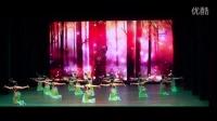 3.16年春华秋实舞蹈大赛《孔雀飞来》第二名