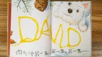 大卫不可以系列童书【大卫,圣诞节到啦!】儿童绘本 亲子共读 儿童读物 讲故事 童话