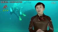 三人行海豚潜水俱乐部介绍