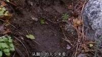 【荒野求生】洛基山脉(试点集 )