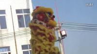 二〇一六年潮阳区铜盂镇老溪西乡请祖舞狮精彩视频04