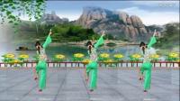 阿娜广场舞 父老乡亲 正反面加分解 抒情舞蹈