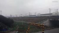 G7591次 安庆~温州南 诸暨站高速通过