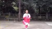 9陈翠娥武当太乙游龙拳分解教学