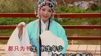 潮剧选段-花烛泪-追思往事泪涟涟(王少瑜)