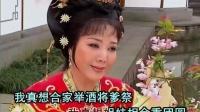 潮剧选段-血溅南梁宫-愿亲人长欢寿百年(王少瑜)