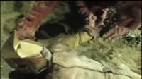 【生鱼片字幕】电子分光人第25话:玛古拉·撒旦王 两大作战
