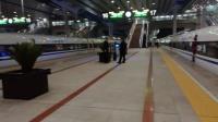 一大波动车组在高铁站台整装待发,干净大气!